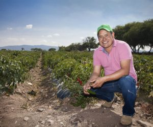 Olvín Pineda, agrilcultor